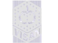 visan-logo-white3.png